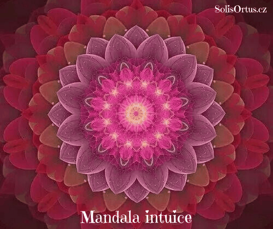 Mandala intuice